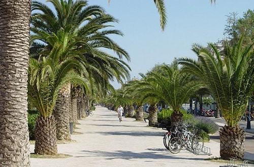 Palmová rivéra - Taliansko