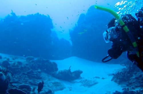 Potápanie - Ras Mohamed