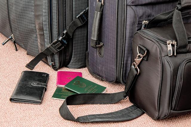 Cestovné pasy